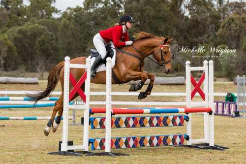 Kojonup Agricultural Show jumping horse and rider over jump poles