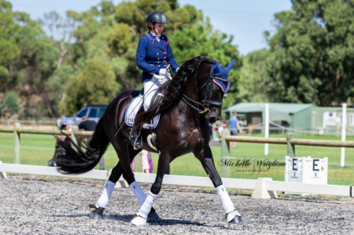 MWP-2019-Friesian-Keuring-Dressage-Freestyle-Display-0071