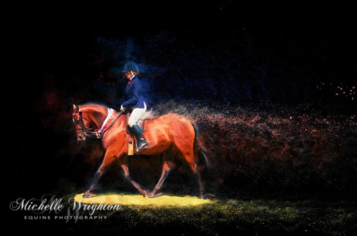 Artistic photo editing Warren Ag Show Horse