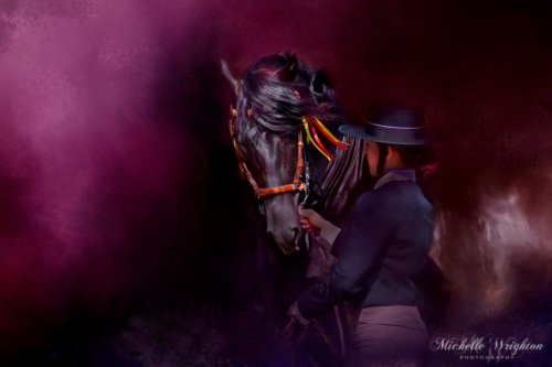 PRE black stallion adalusian horse Artistic photo editing